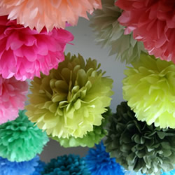 Party Pom Poms by Party Poms