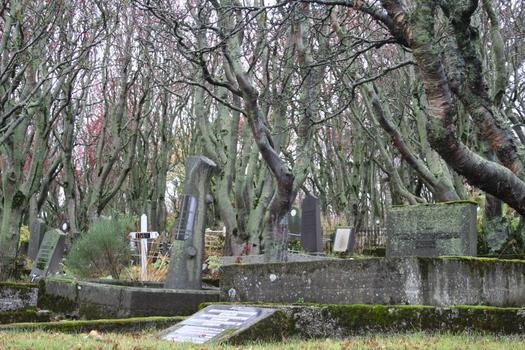 Cemetery in Reykjavik