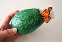 Chrysalis Craft Pic 6 for Classic Play's Science Issue