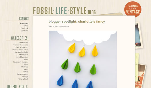 Fossil blog screen shot