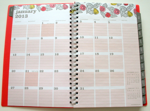 Egg Press roses planner in orange for Blue Sky